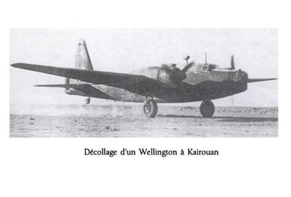 Wellington Kairouan
